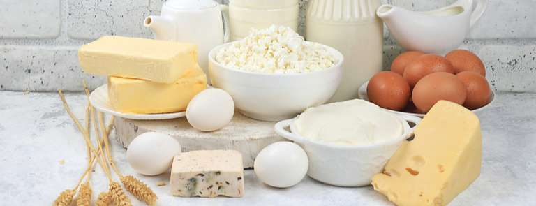 selection of dairy foods