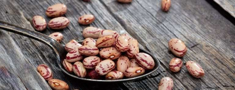 Raw pinto beans on an old wooden table