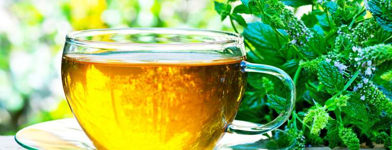 peppermint leaves and fresh tea