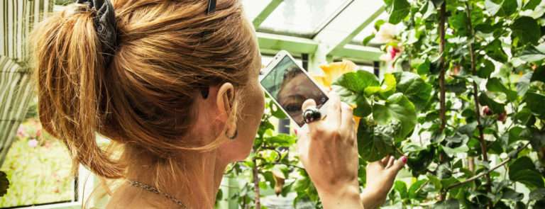 hobbies at home - a woman using her phone to take a photo of her plants