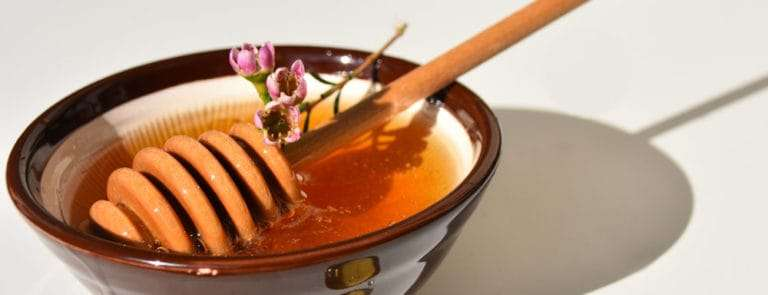Honey dipper in a small bowl of honey with a Manuka flower floating on the surface