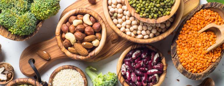 flat lay of vegan protein sources