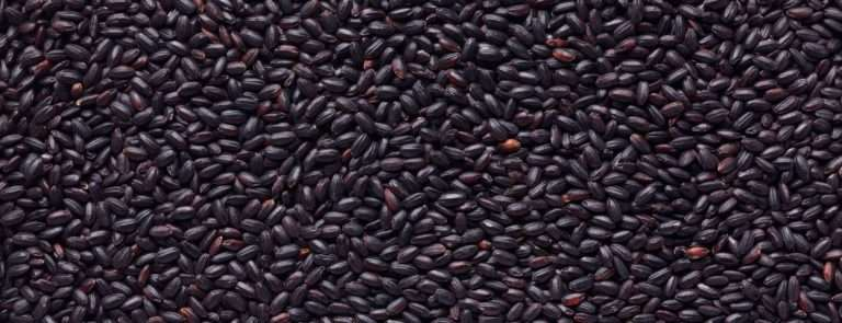A screen filled with black rice granules.