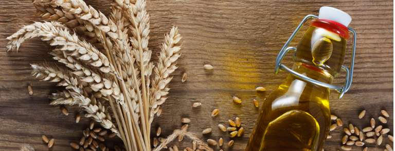fresh wheat germ next to bottle of oil