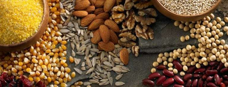 Various seeds, nuts and beans